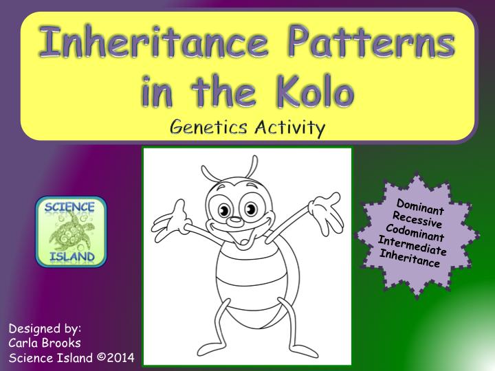 Inheritance Patterns In The Kolo Genetics Activity Genetics