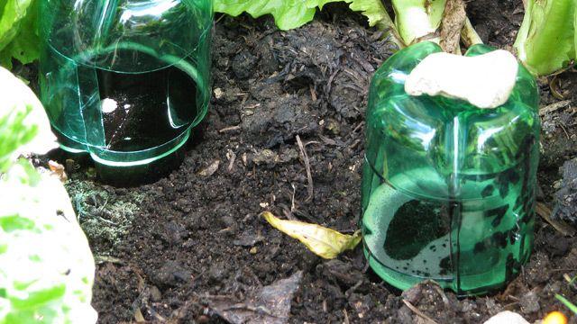 Slug trap.