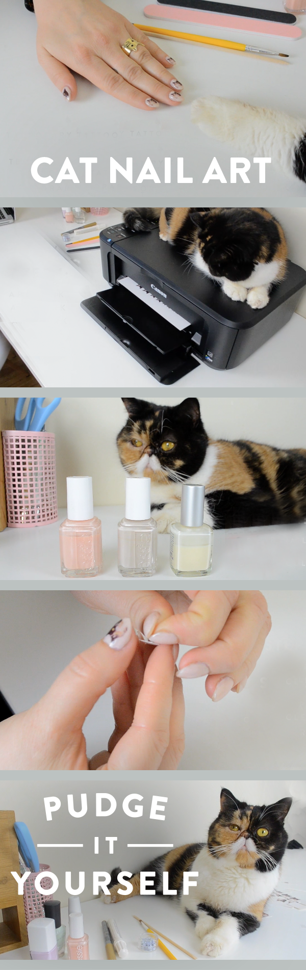 Cat Nail Art tutorial from Pudge-It-Yourself with Pudge the Cat!