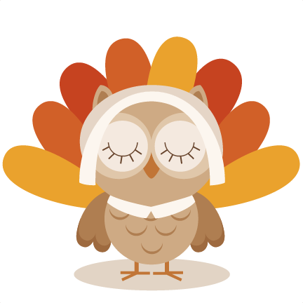 Image result for owl turkey
