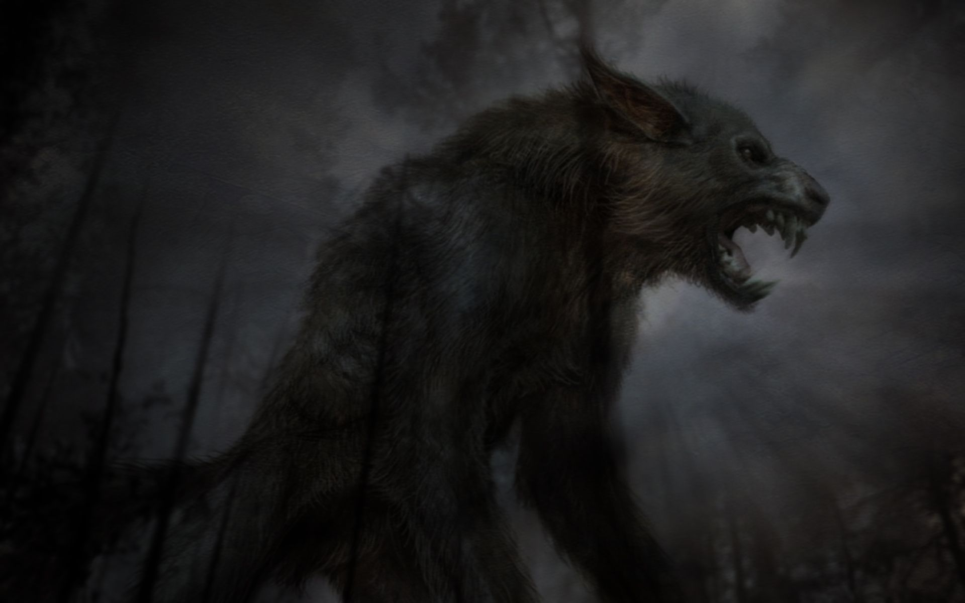 Image result for werewolf realistic