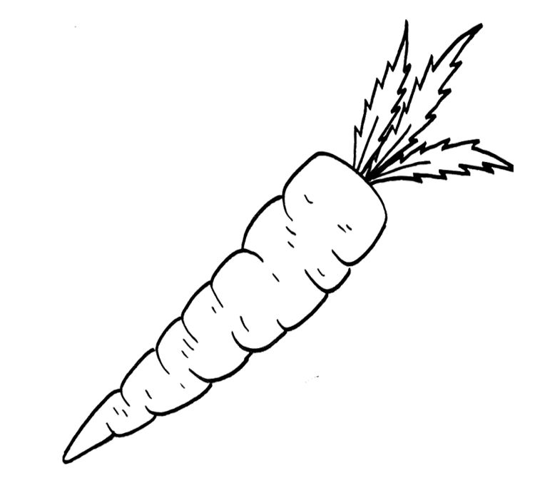 Vegetable Food Carrot Coloring Page For Kids