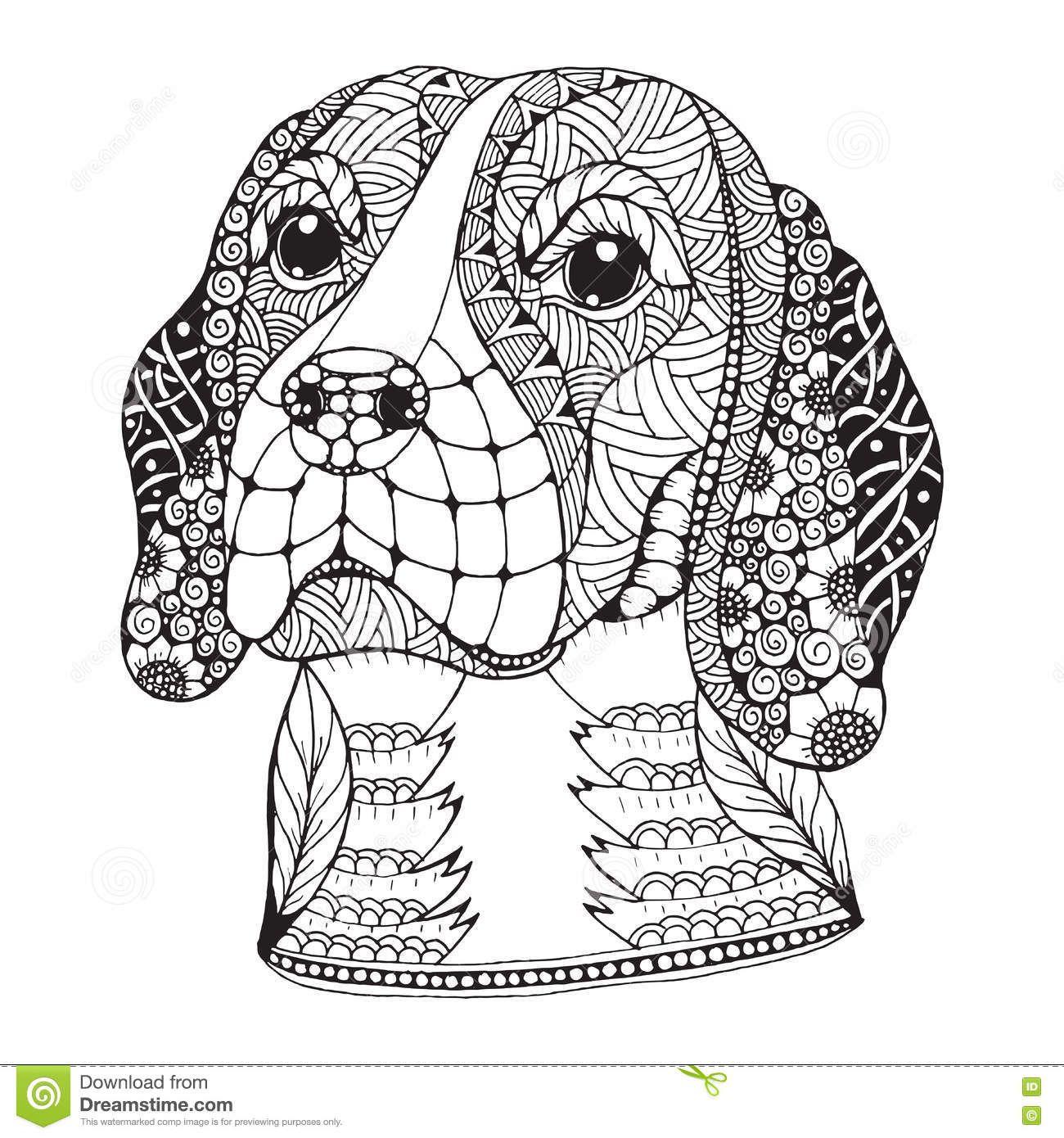 Beagle Dog Head Zentangle Stylized Vector Illustration Stock