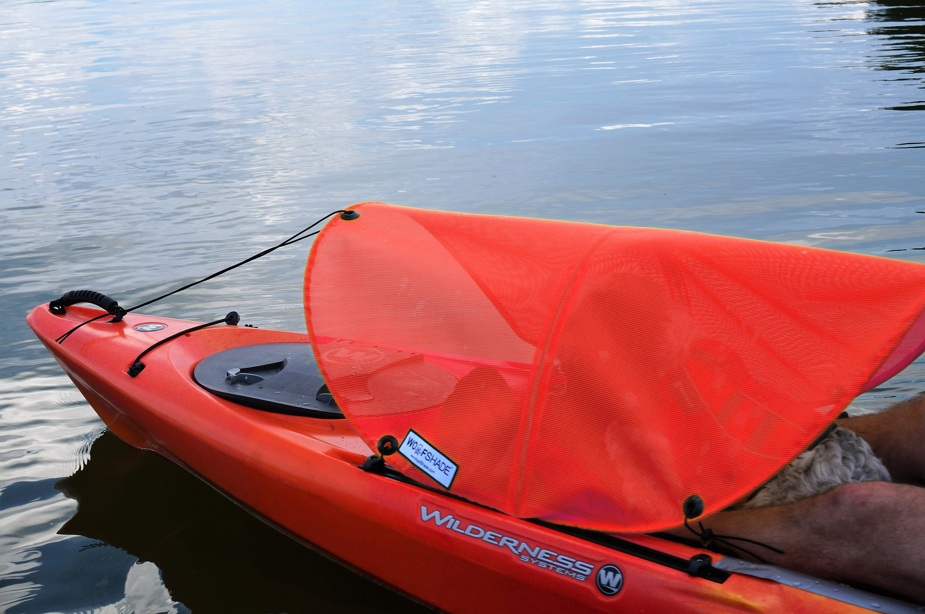 Dog Paddling Sun Shade For Kayaks Canoes And Sups With Images
