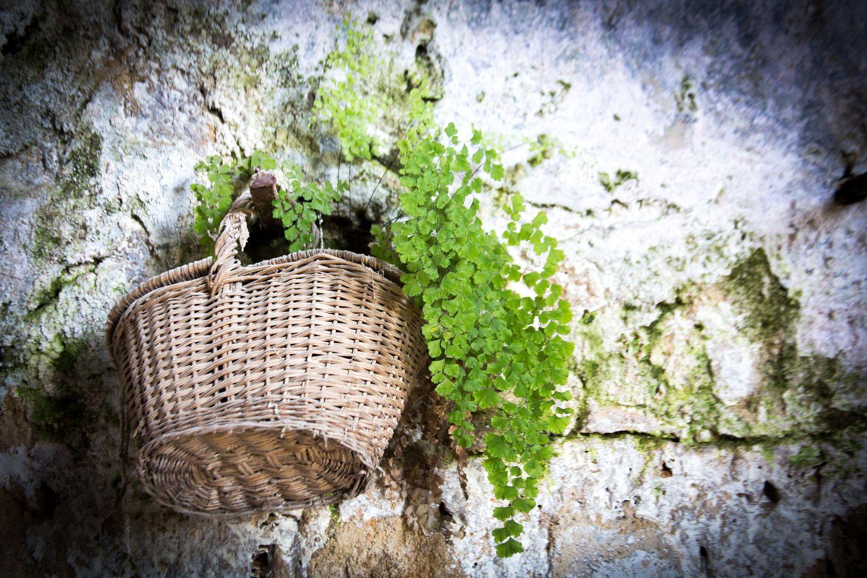 Cotignac, village fleuri de Provence verte