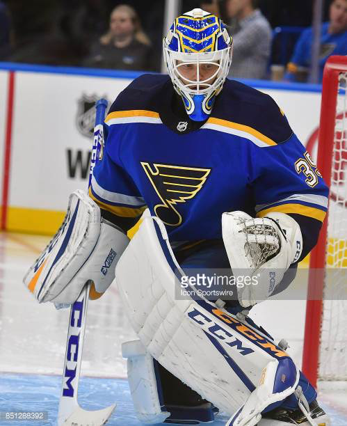 Ville Hudson Goalie mask, St louis blues, Football helmets