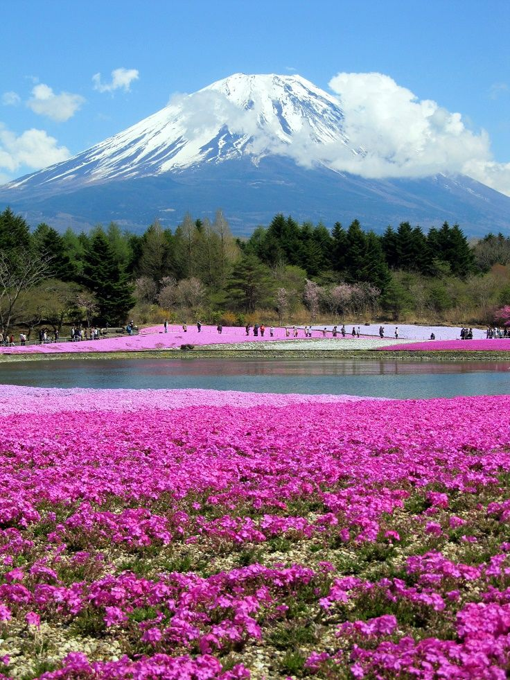 Top 10 Beautiful Places In Japan For Nature Lovers 風景