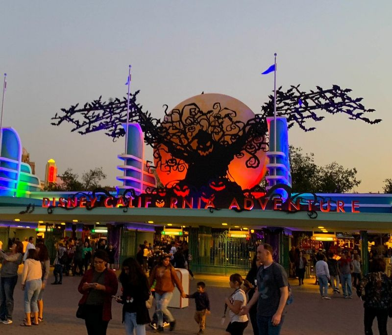 Fall is here and so is Halloween Time at the Disneyland Resort