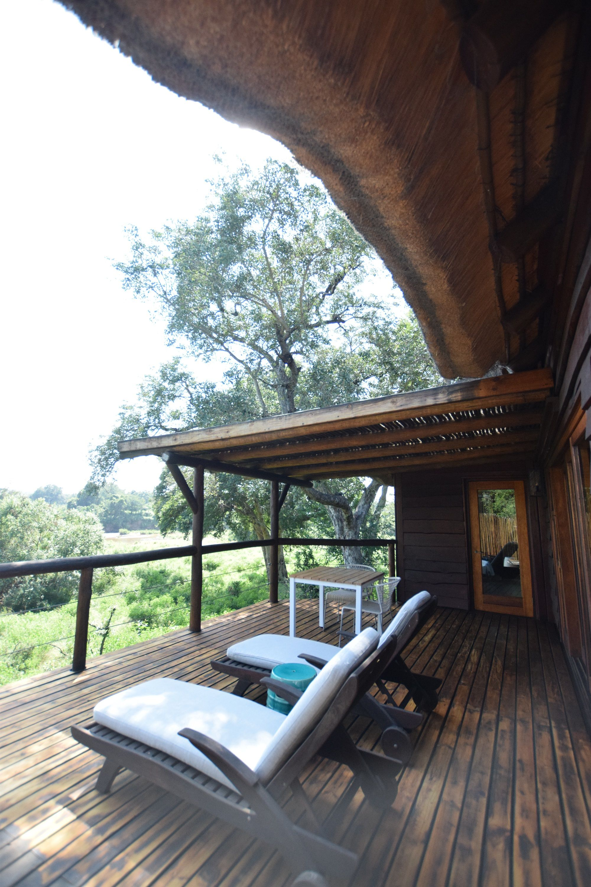 Lion Sands Narina Lodge Review a travel blog introducing