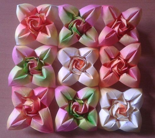 My folding  /   Fukuyama  rose and  four  petal  flower