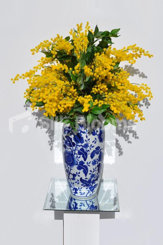 Luxurious yellow mimosa and green bay leave floral table arrangement luxurious yellow mimosa and green bay leave floral table arrangement w ginger vase mightylinksfo