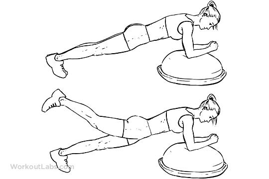 Bosu Ball Plank Leg Lifts