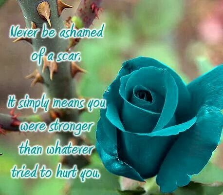 Ovarian Cancer Awareness ~ Never be ashamed of a scar , It simply means you were stronger than whatever tried to hurt you .