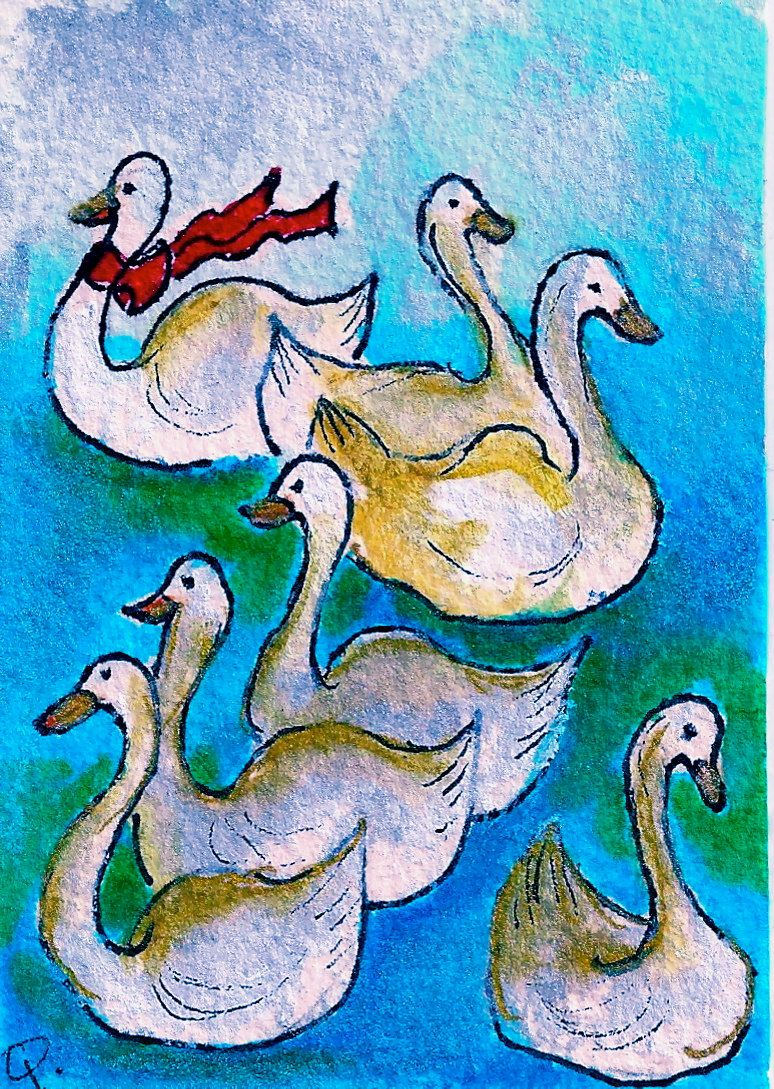 Day 7 7 Swans Aswimming The Twelve Days Of Christmas Seven Swans