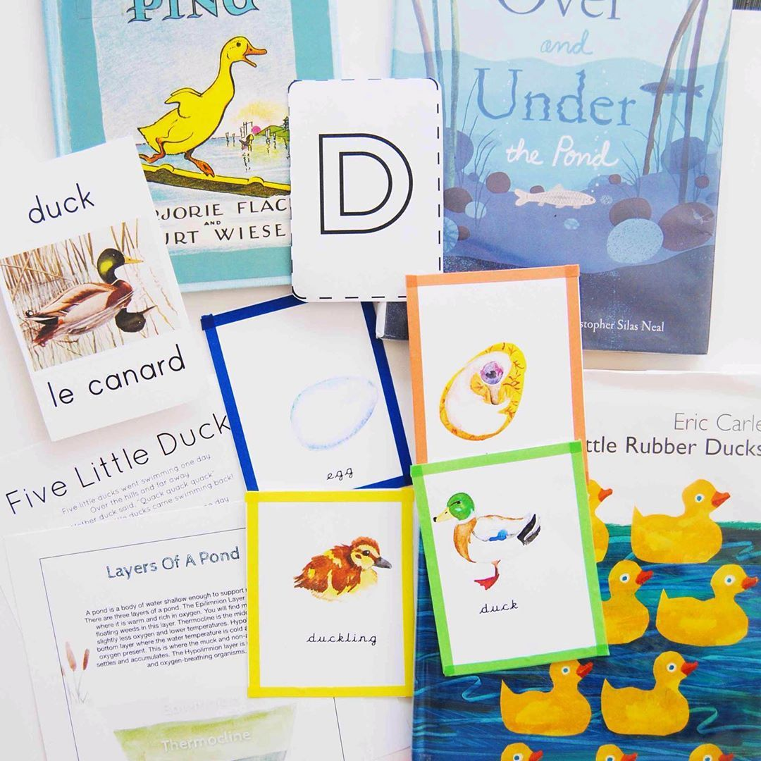 10 Little Rubber Ducks Rubber Duck Animal Books Elephant Book