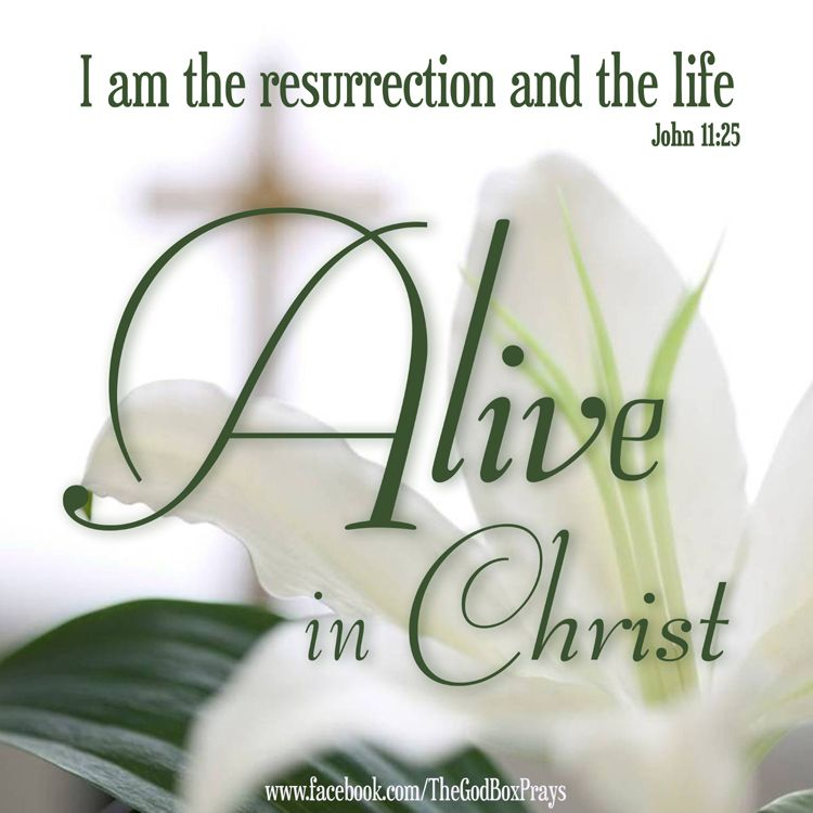 alive in christ i am the resurrection and the life john 11 25 christmas and easter. Black Bedroom Furniture Sets. Home Design Ideas
