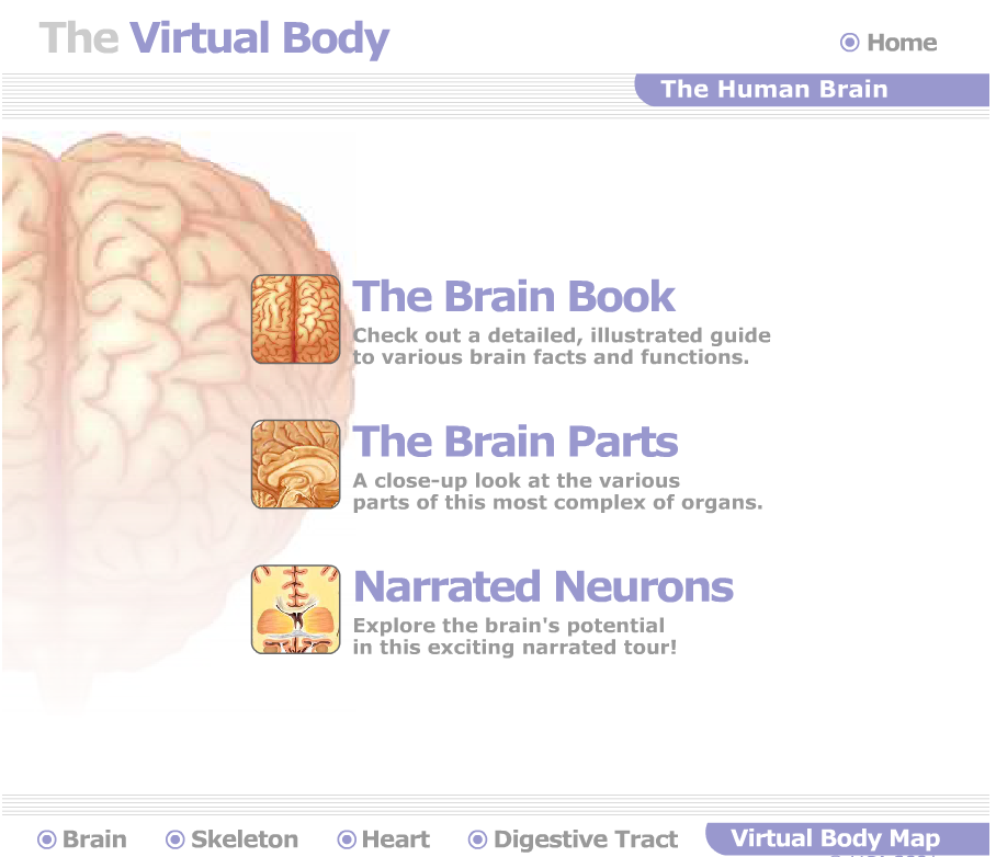 Great Websites To Teach Anatomy Of Human Body In 3d Teaching Aids