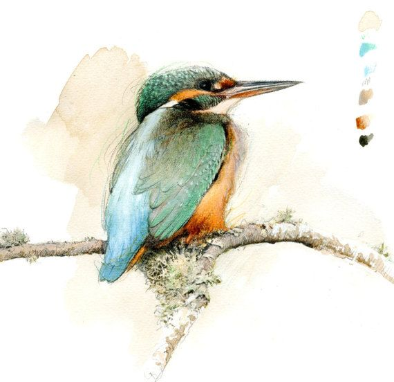 Martin Pecheur With Images Kingfisher Painting Original