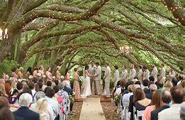 Oak Hollow Farm Fairhope Alabama Wedding Alabama Weddings Fairhope Dolores Park