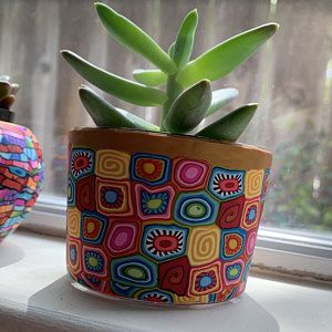 Very big colorful indoor pot for plants