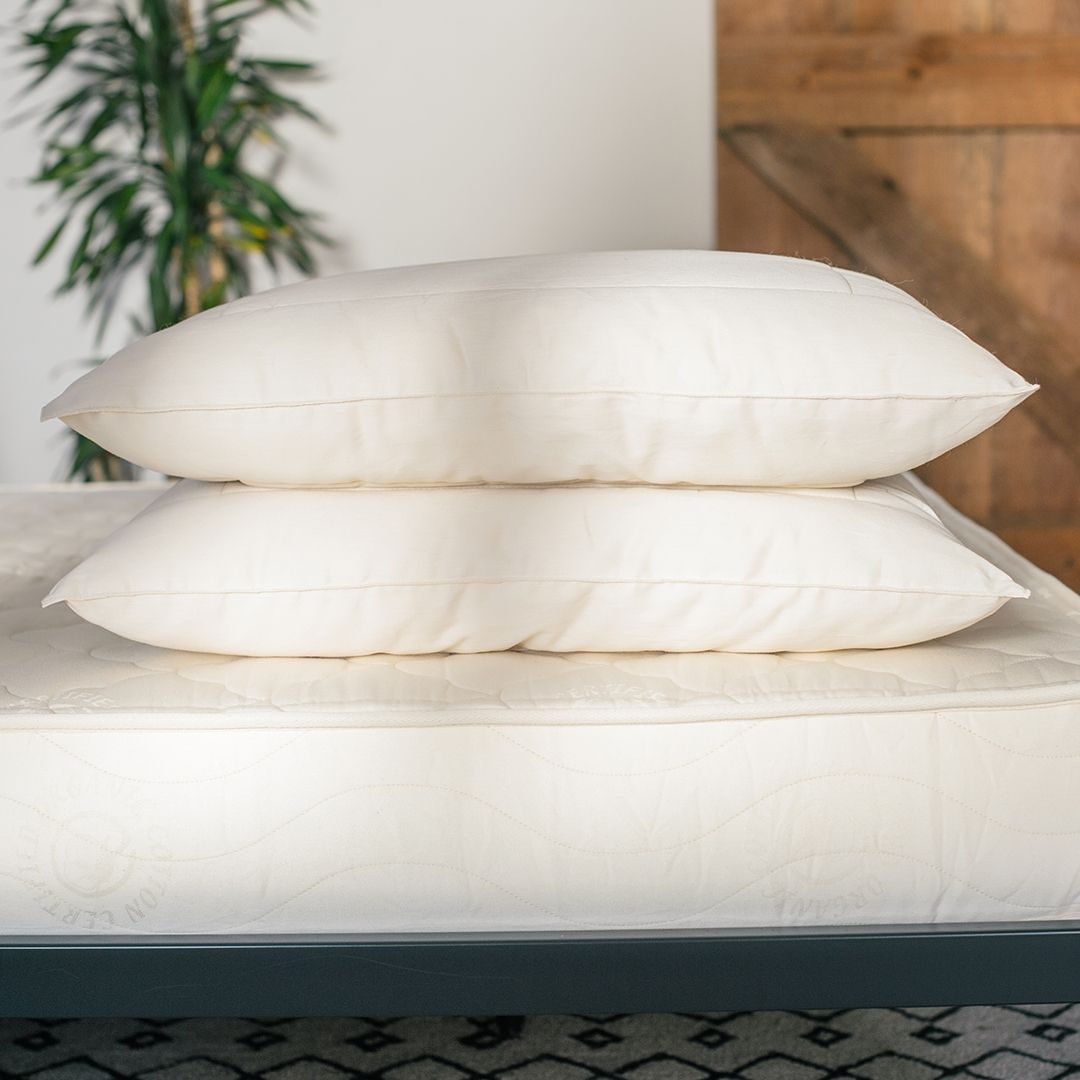Organic Pillows And Their Myths