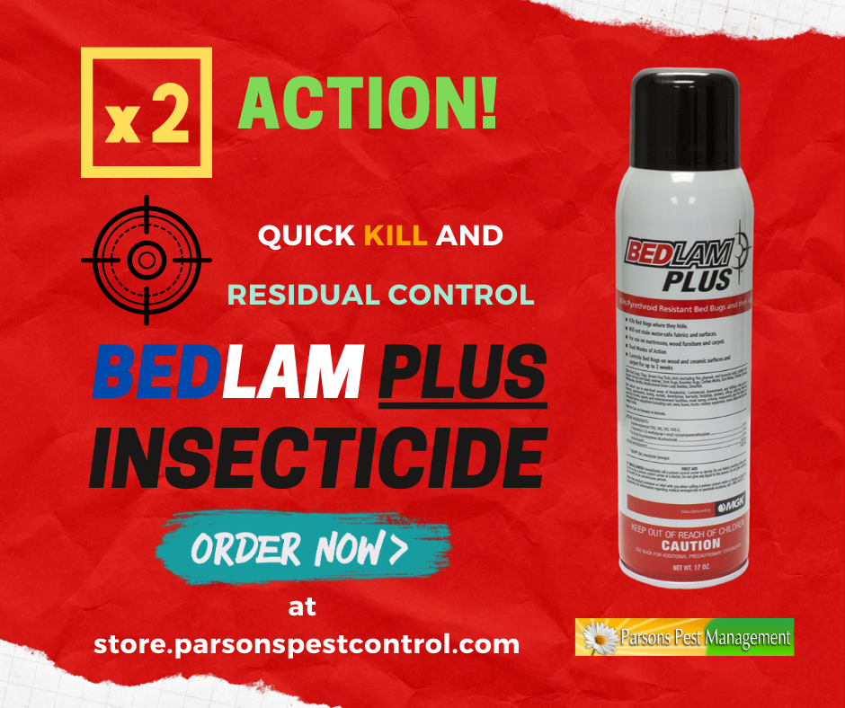 Bedlam Plus Insecticide in 2020 Bed bugs, Insecticide