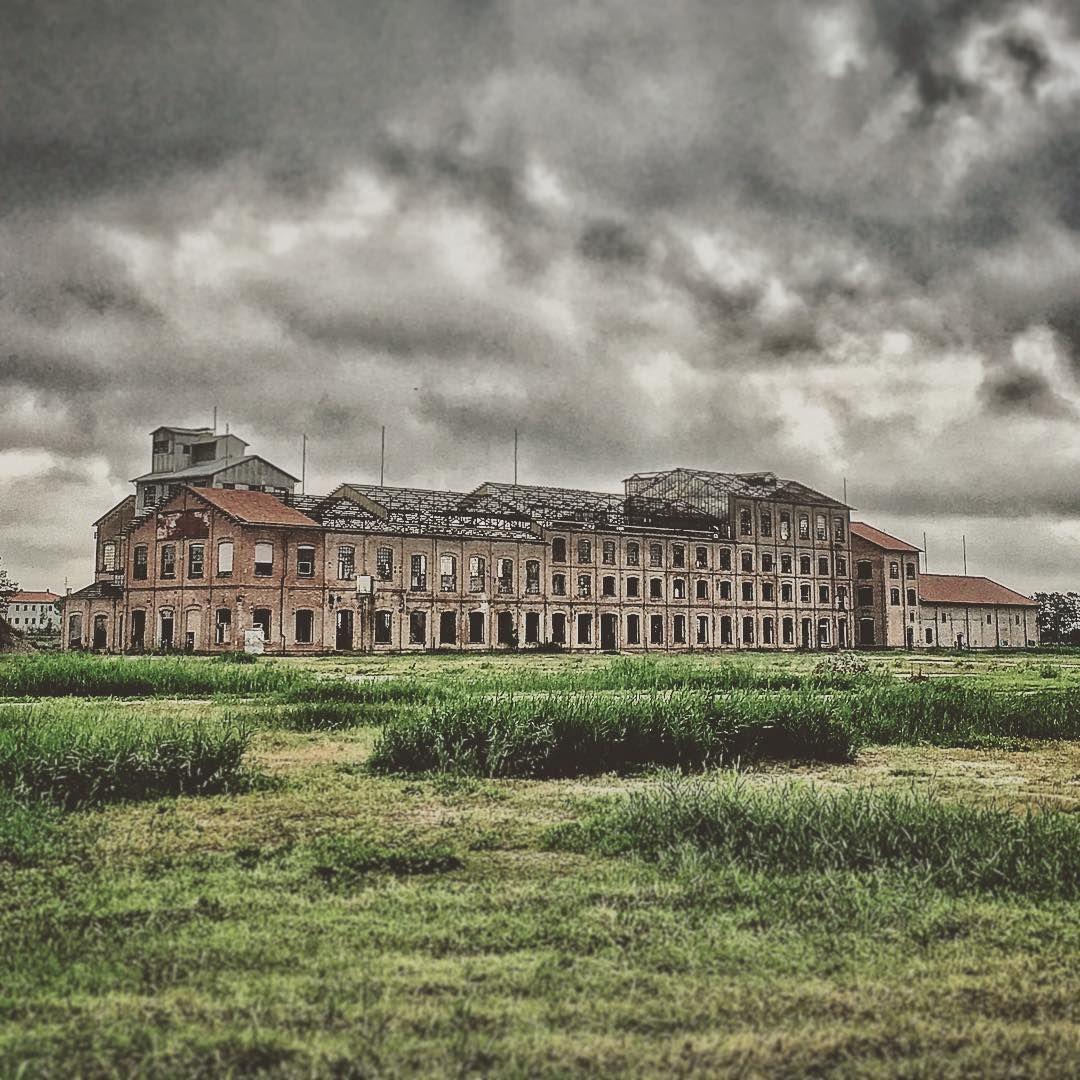 Abandon Plant Near Venice. In 2020