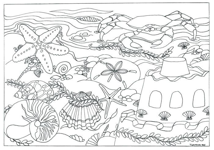 Printable Beach & Seashells Scene Coloring Page Coloring