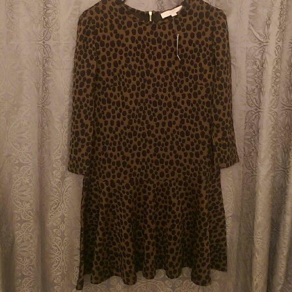 Loft Brown and black dress Great for fall with tall boots! Or dress it up with heels!! Gold zipper down back. LOFT Dresses