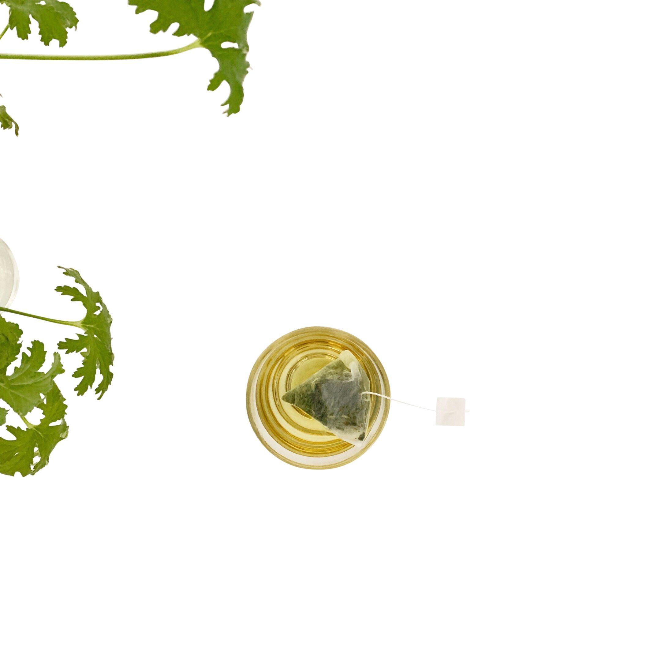 Photo of RT1home Lemongrass Green Tea bags