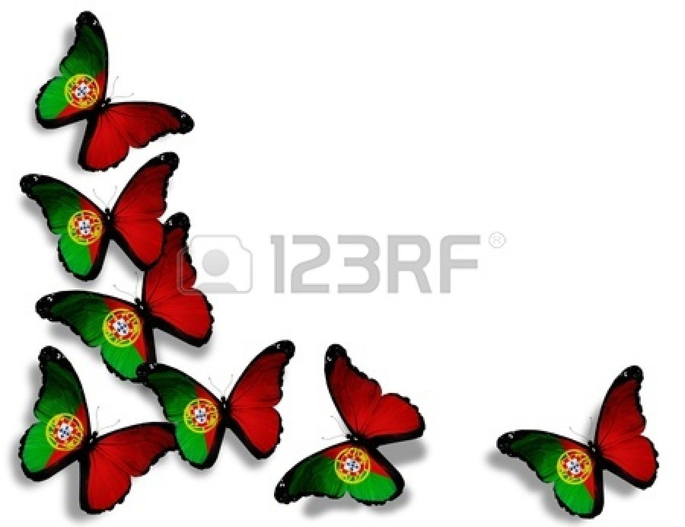 Pics photos desk with flag in background photographic print by - Portuguese Flag Butterflies Isolated On White Background Stock Photo