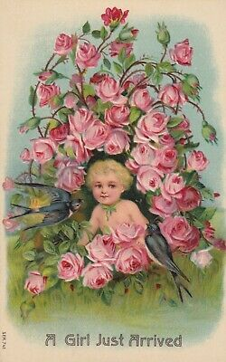 Find many great new & used options and get the best deals for BIRTHDAY , 1900-10s ; A Girl Just arrived , Pink Roses at the best online prices at eBay! Free delivery for many products!