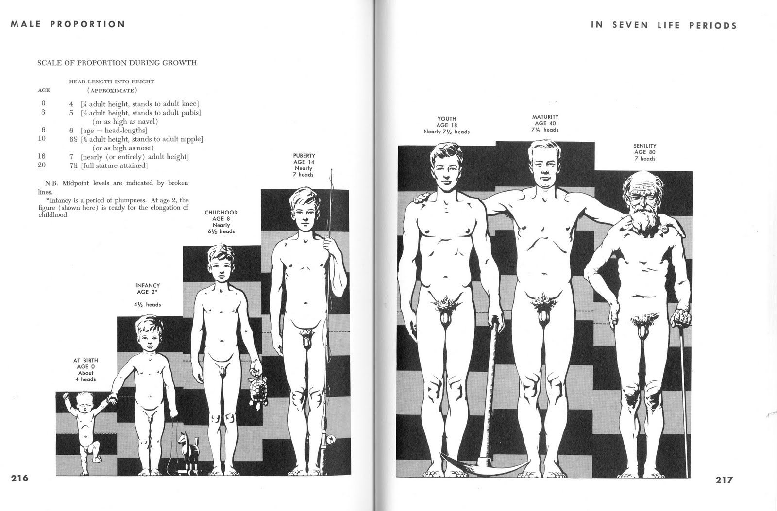 These Are From Atlas Of Human Anatomy For The Artist By Stephen