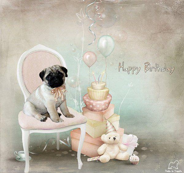 Pug Birthday Card PUG BIRTHDAY CARDS – Pug Birthday Cards