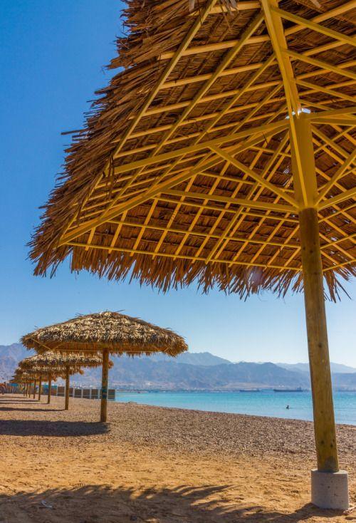 Eilat, Israel   Best Beaches to go...   Pinterest   Eilat, Israel ...