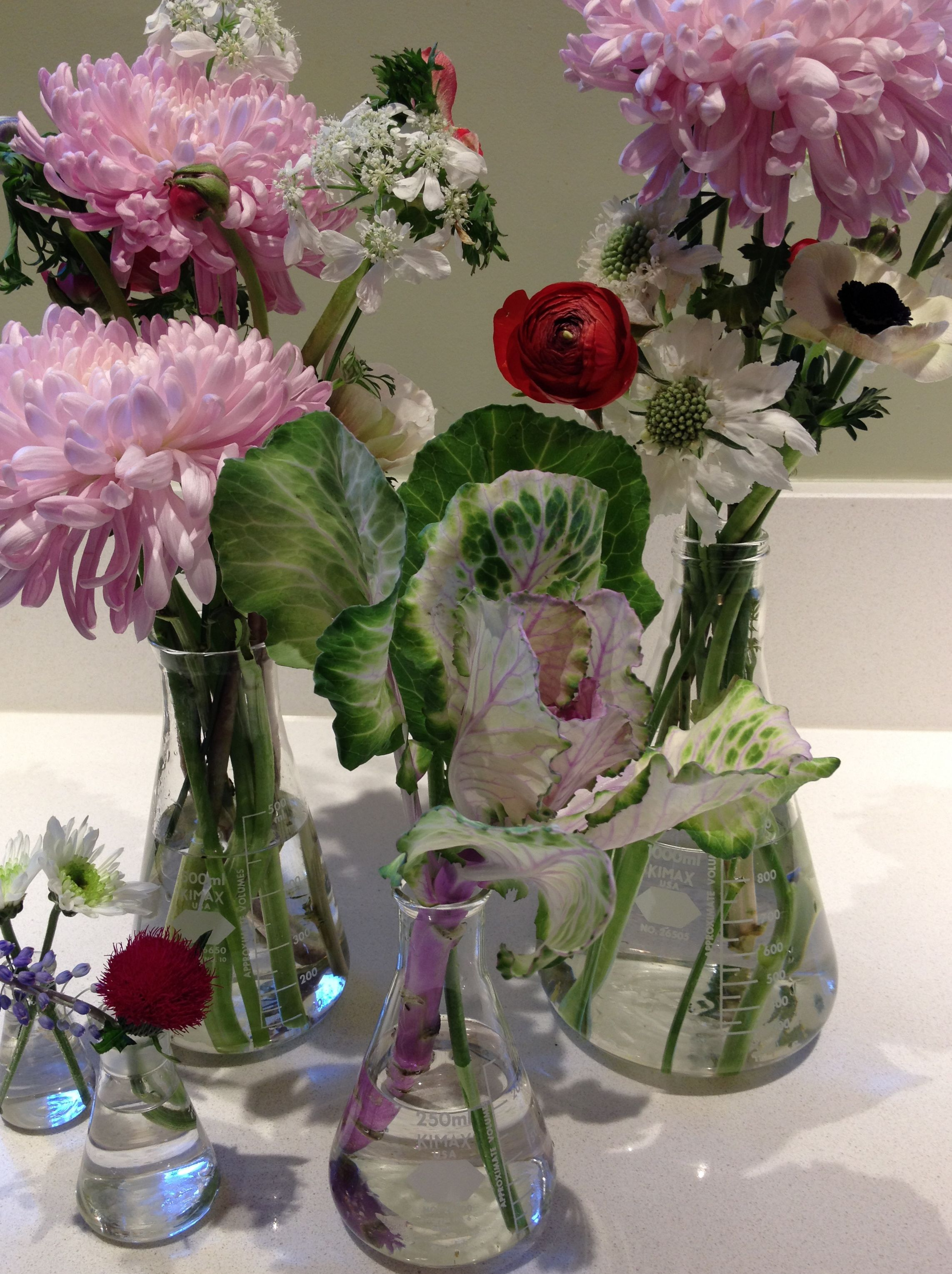 Beakers As Alternative Vases Vase Flower Power Flowers