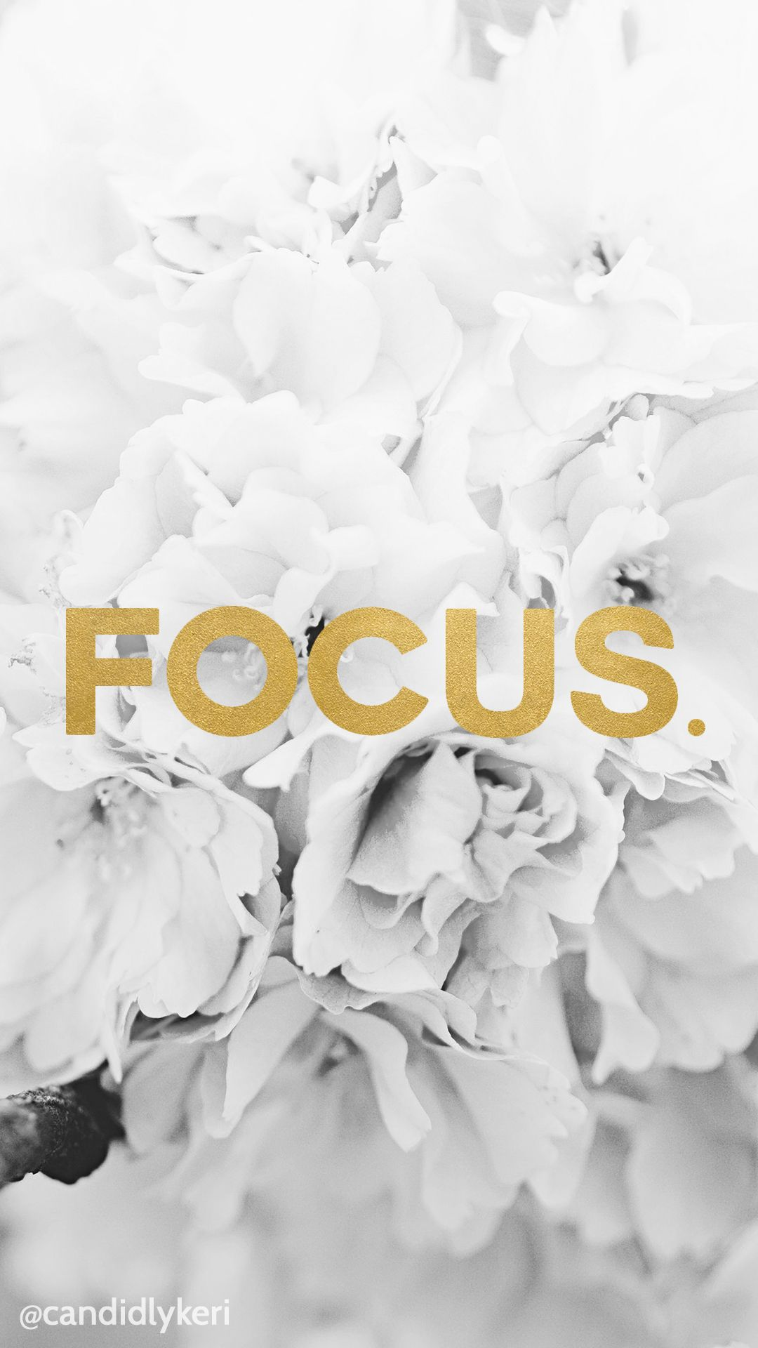 Focus Gold Foil Wallpaper With Black And White Flowers Free Download
