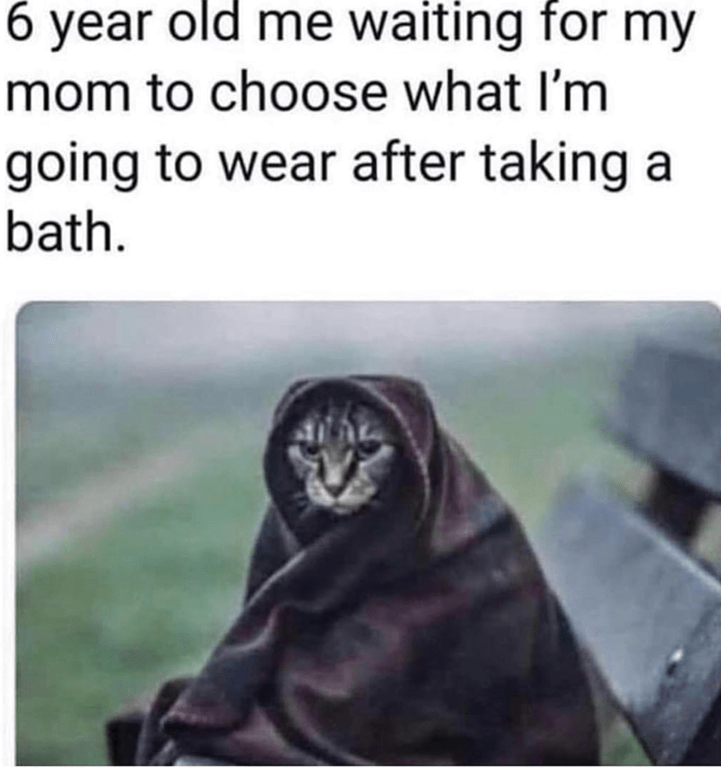 26 Fresh Out Of The Kitchen Caturday Memes For You