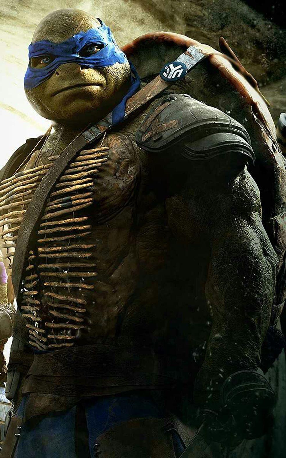 Teenage Mutant Ninja Turtles Tmnt Tmnt