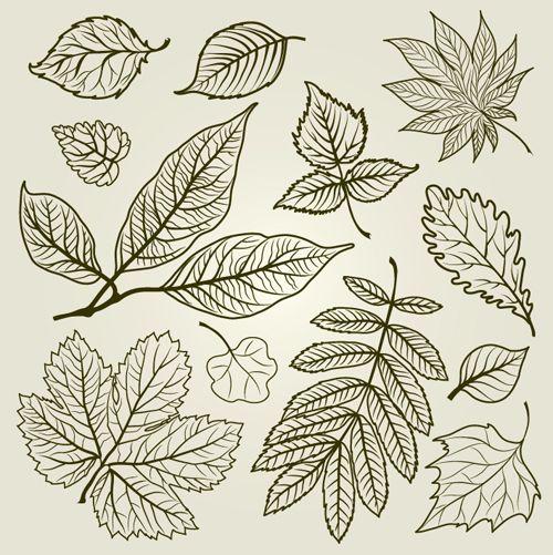 Hojas de otoño en vector | Tatuajes de hoja, Hojas de otoño ...