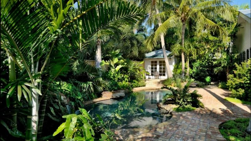 how to design a tropical garden. Tropical garden design Everything you need to know about tropical