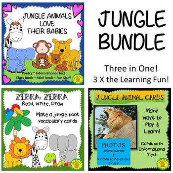 Animals In The Jungle Bundle 3 Resources In One Vocabulary Cards Class Book School Readiness