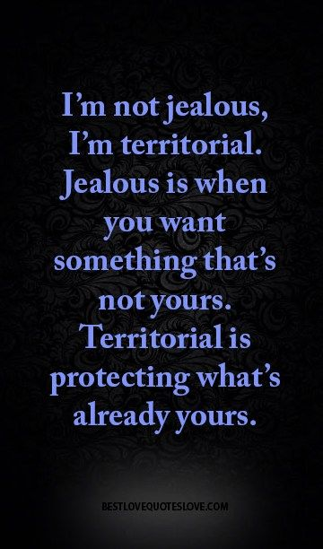 I M Not Jealous I M Territorial Jealous Is When You Want Something That S Not Yours Territorial Is Protecting What S Already Yours Best Love Quotes Love Quotes Quotes