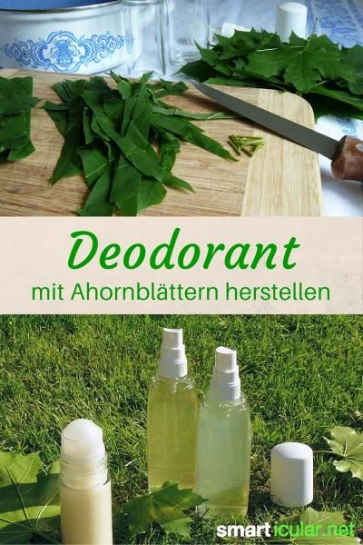 erfrischendes ahorn deodorant als spray und roll on selber machen kosmetik diy pinterest. Black Bedroom Furniture Sets. Home Design Ideas