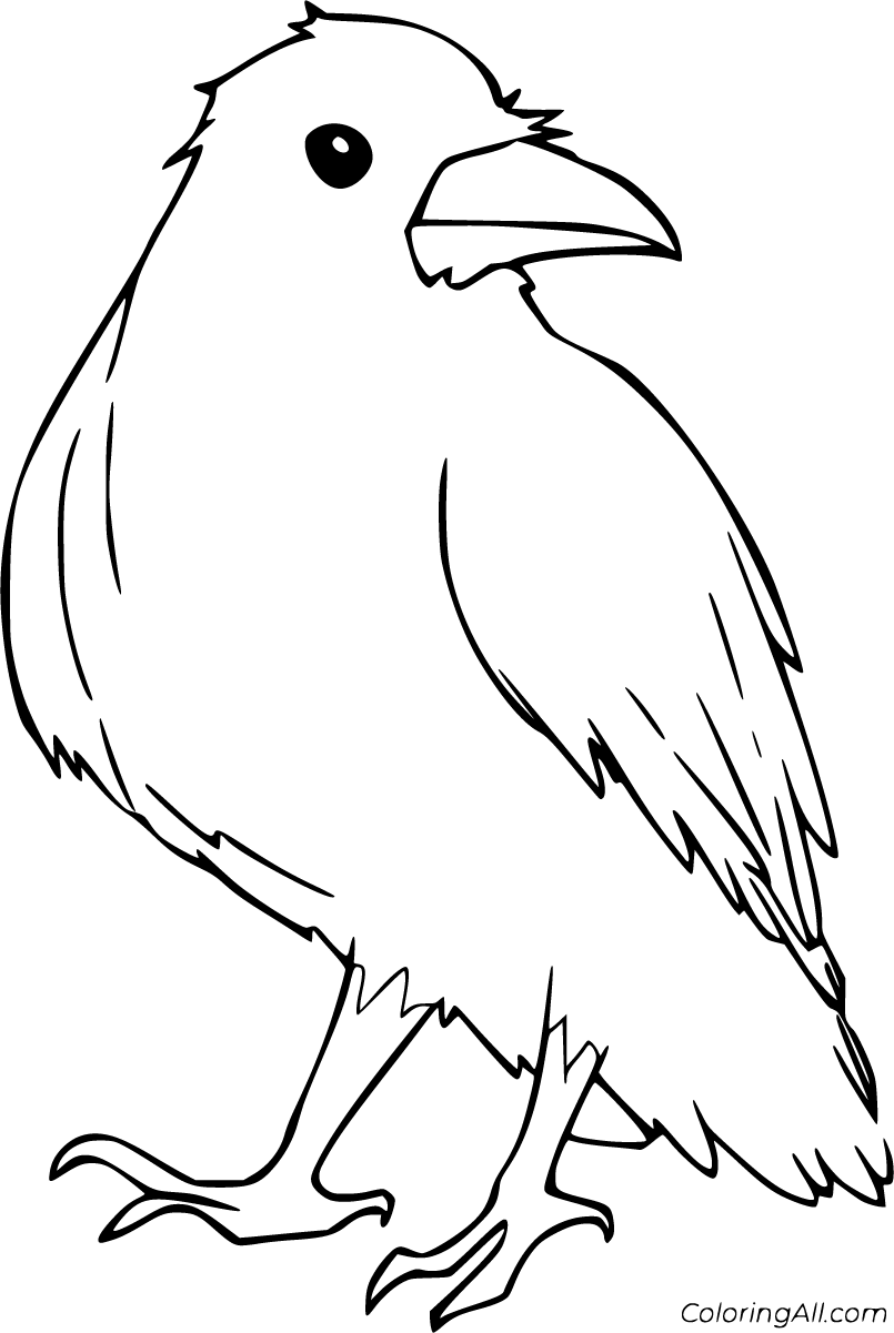 11 Free Printable Raven Coloring Pages In Vector Format Easy To Print From Any Device And Automatic Bird Coloring Pages Coloring Pages Halloween Coloring Book
