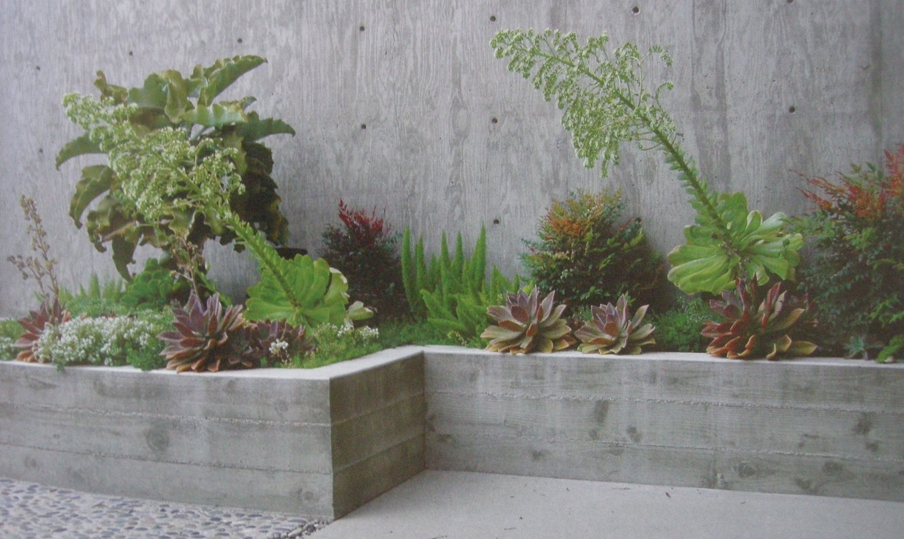 Board Formed Concrete Wall Driveway Succulent Landscaping Front Yard Landscaping Retaining Walls Concrete Planters