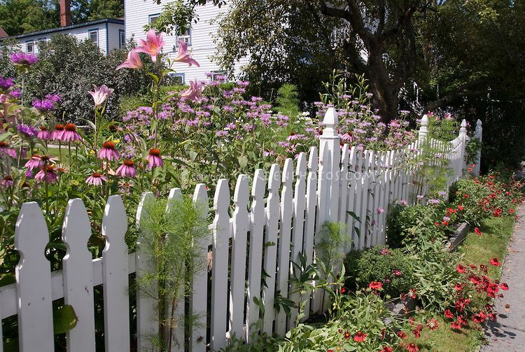 Fencing With Floral Borders White Picket Fence And Pink