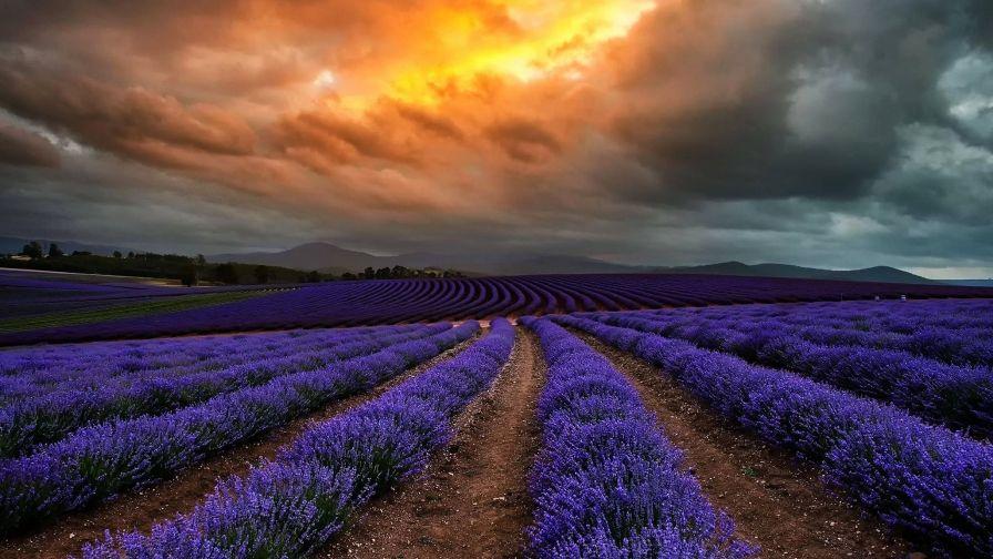 Beautiful Australia Tasmania Wallpaper Full Free Download High Resolution Landscape Photography Photography Contests Landscape