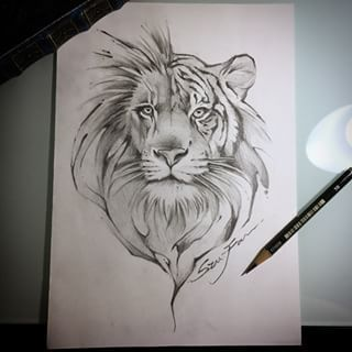 Image Result For Half Lion Half Tiger Tattoo Tattoos Pinterest