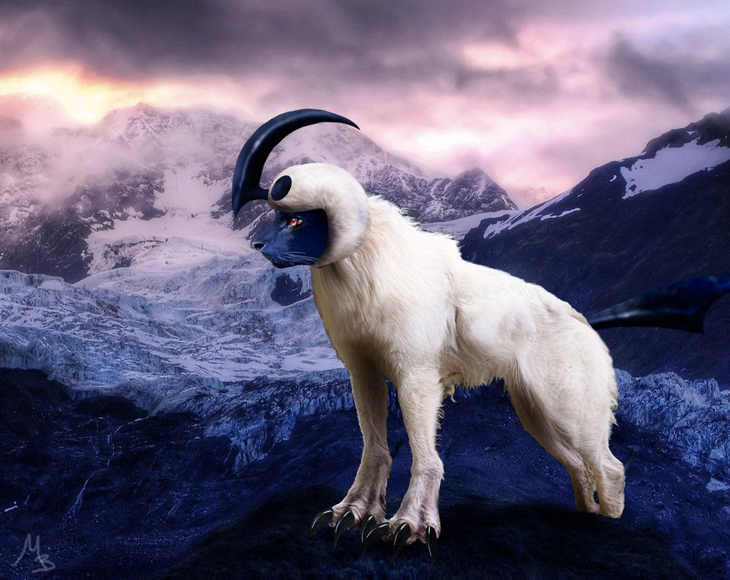 Real life Absol | Real Life Pokemon | Pinterest | Real ...